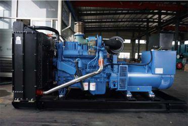 玉柴YC6MJ480L-D20 300KW柴油发电机组
