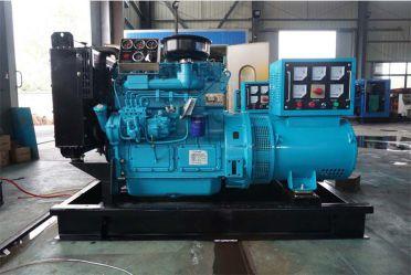 潍柴华丰20KW柴油发电机组495D10
